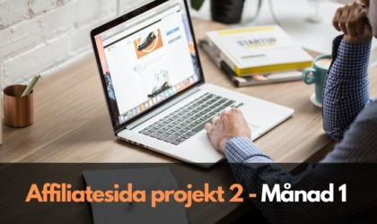 Affiliatesida projekt 2: Månad 1